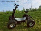 2020 Nouveau VTT électrique Original couleur noir classique comme001 60V/2400W Le moteur 4roues VTT hors-route