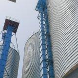 Correa de alta calidad de la cadena/elevador de cangilones de material a granel transporte vertical