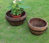 4개 크기 브라운 중국 전나무 7각형 재배자 화분
