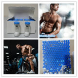 Synthetisches Peptid Ipamorelin--Handhabung am Boden, die für Bodybuilder freigibt