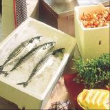 Коробка плодоовощ коробки льда коробки рыб прессформы EPS машины EPS