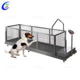 حيوانيّ طاحونة دوس كلب [ترينينغتردميلّ] كهربائيّة محبوب طاحونة دوس