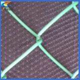Оптовая торговля дешевые ПВХ покрытие звено проволочной сеткой