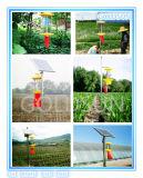 농업 비행 곤충 또는 유해물 함정 살인자 램프, 태양 강화하는, 녹색, 제조자