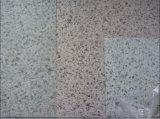 Pré aço pintado de design de mármore (ES002)