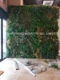 La magnolia fausse artificielle extérieure de simulation laisse le mur de haie