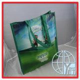 Les sacs publicitaires PP non tissé (ENV-PNV117)