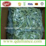 Sojaboon IQF Edamame met eiwit en Met laag vetgehalte Hoogte -