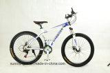 좋은 디자인 산 자전거 MTB-003