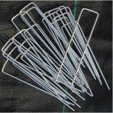Chiodi (zincati) galvanizzati metallo per i perni di plastica