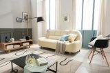 Insieme domestico del sofà di disegno di modo della mobilia