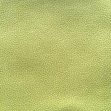 Tessuto di lavoro a maglia della mobilia del tessuto del sofà del velluto con lo sguardo del cuoio (panda)