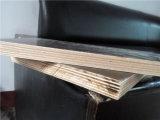 بناء خرسانة خشب رقائقيّ [وبب] غراءة حوض لب [فيرست غرد]