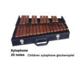 25 Notes d'enfants Xylophone glockenspiel