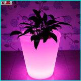 照らされた庭の植木鉢LEDは屋外プランターをつける