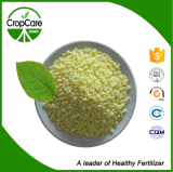 Zusammengesetzte organische NPK Düngemittel-Fertigung (10-5-10)
