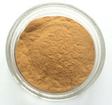 Polisacáridos anticáncer del extracto de la seta de Shiitake del producto del cuidado médico el 30%