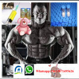 筋肉強さのテストステロンの同化ステロイドホルモン、純粋なテストステロンDecanoate高く