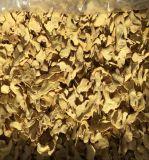 Récolte fraîche Flocons de gingembre sec de qualité Premium