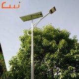 금 공장 싼 가격 30 와트 60 와트 옥외 태양 LED 도로 빛