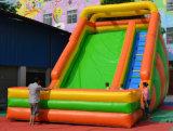 Trasparenza rimbalzante del pinguino del Bouncer del castello di /Jumping del giocattolo gonfiabile della Cina (T4-195)