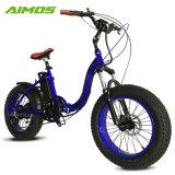 Aimos 48V 750W die Elektrische Fiets vouwt