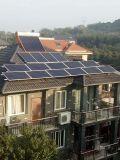 Panneau solaire mono/poly 325W 320W des bons prix