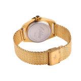 L'acciaio inossidabile della nuova di modo della vigilanza della maglia fascia della cinghia guarda gli orologi promozionali di lusso del quarzo degli uomini