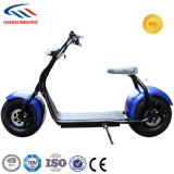 С 60V и 15AH китайской батареи 1000W Харлей скутера с электроприводом