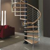 Fascio del acciaio al carbonio e scala a spirale di legno solido