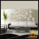 로비 LED 알루미늄 벽 램프 (HP1008)