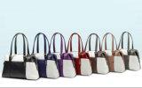 De Kleur van het contract Dame Handbag Boston Bag (WDL0800)