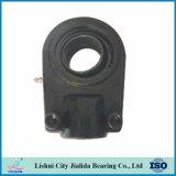 Rodamientos de extremo de Rod hidráulicos de la fuente del rodamiento de China (GK60NK)