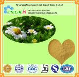 Qualität Feverfew Auszug 0.8% Parthenolide