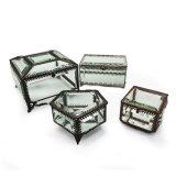 De Doos van de Juwelen van het Glas van de Manier van de Premie van de douane voor halsband