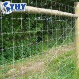 1.2mのペルーのための260gr/M2によって電流を通される家畜の牛塀
