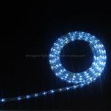 indicatore luminoso flessibile al neon LED della corda di natale dell'indicatore luminoso 3wire della corda di 13mm LED