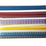 색깔 (QT11) 여러가지 장방형 레이스 Quilling 종이
