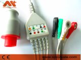Bionet BM3 One-Piece Direct Connect Cable de ECG,