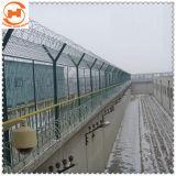 PVCは機密保護によって保護された金網の塀か庭の塀に塗った