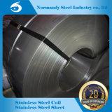 Tiras laminadas a alta temperatura do aço inoxidável (309/310/316/321)