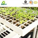 OEM Anti-Impact Resilient водонепроницаемый изолирующий экологически безвредные EPP пена лотков для подачи семян