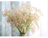 꽃 Gypsophilas 보존한 수입상은 선물로 신선한 꽃을 보존했다