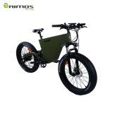 Nuovo modello all'ingrosso della bicicletta elettrica della montagna grassa della gomma con 3000W