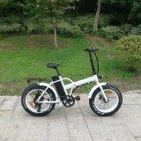 fettes Reifen 20inch Aussis Strand-Fahrrad
