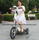 Mini motorino elettrico di mobilità delle 3 rotelle di alta qualità 2017 con Ce