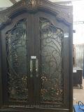 Передняя дверца железа Design/двери из кованого железа (EI-012)