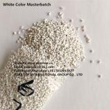 Цвет Masterbatch ЕВА ABS белый для поставщика мастерской серии плёнка, полученная методом экструзии с раздувом пластичного