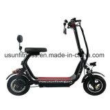 脂肪質のタイヤの電気スクーターのHoverboardの電気スケートボードEのスクーター