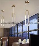 Moderne Kalt-Kathode hängende Lampe (WH-6689Z)